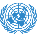 United Nations Economic and Social Council (ECOSOC) – Intermediate Level (Online)