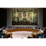 United Nations Security Council B